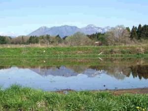 5月3日の茶臼岳遠望