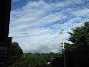 台風一過のスッキリとした青空です