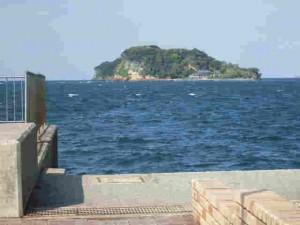 東京湾唯一の自然島「猿島」
