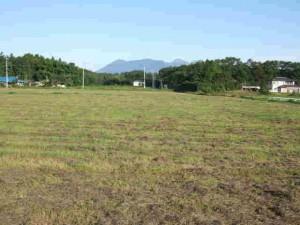 秋の草刈が終わった牧草地
