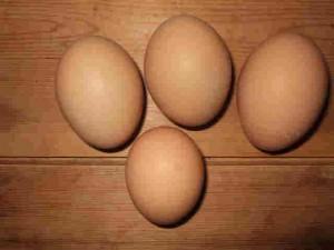 手前は市販のMサイズ、我が家の卵はLL。