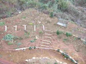 西側緩傾斜地を利用した手作り庭園